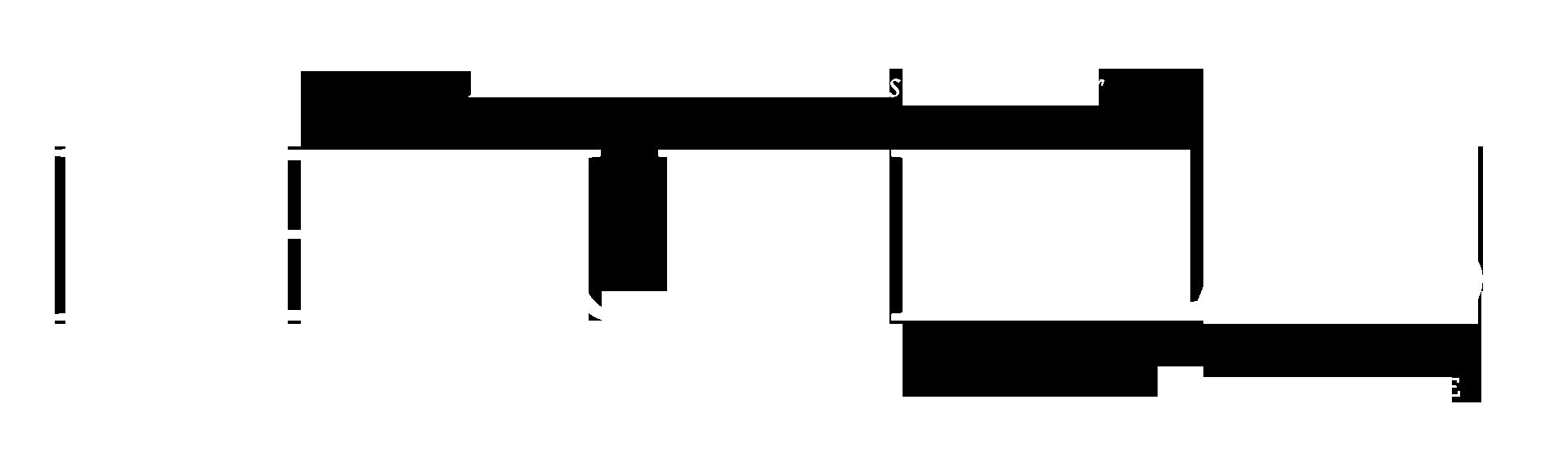 REVISTA REVUELTAS